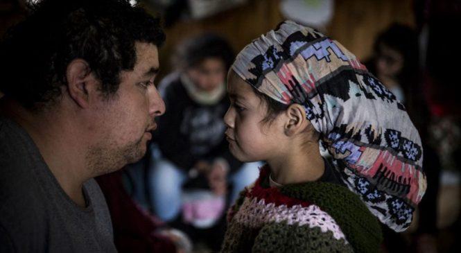 Por las infancias mapuches en procesos de recuperación territorial exigen perspectiva intercultural