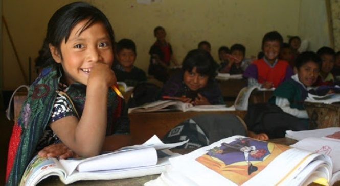 ¿Para cuándo los derechos educativos de los pueblos originarios?