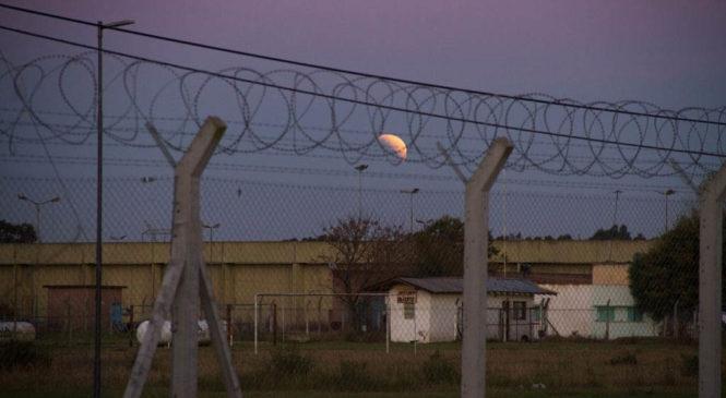 Cárceles y pandemia: punitivismo, raíz de la crisis del sistema penal