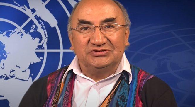 """""""Los pueblos indígenas pueden ser las víctimas privilegiadas de la post pandemia"""""""