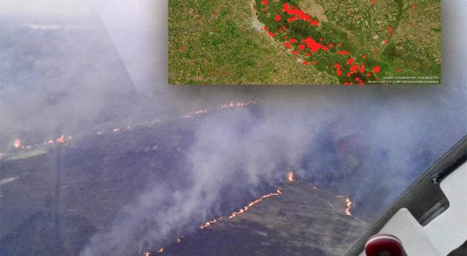 Delta del Paraná: La mayoría de los fuegos en islas son intencionales y por el corrimiento de la frontera agropecuaria