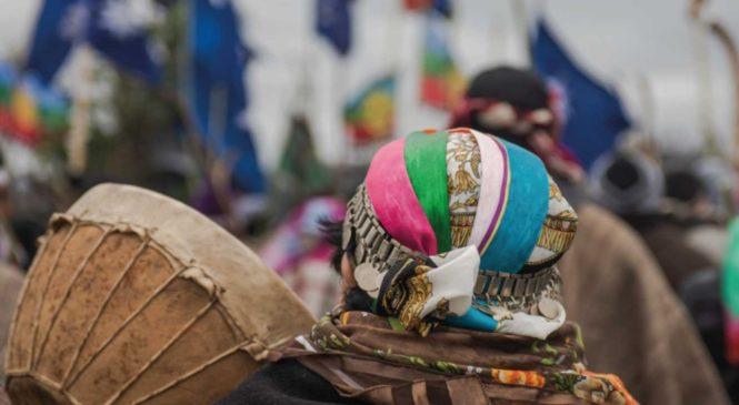Los 171 casos de personas mapuche asesinadas / desaparecidas por la dictadura en Chile