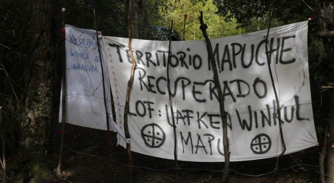 Artera y racista causa iniciada por el Obispado de San Isidro contra la comunidad Winkul