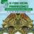 Compromiso desde la Amazonía: La Carta de Mocoa