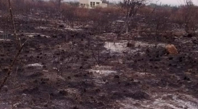 Luyaba, el pueblo de Córdoba que casi desaparece por el fuego