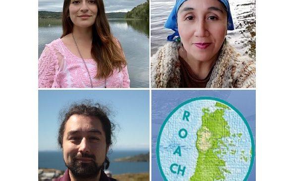 Especial: Propuestas y desafíos desde Chiloé a la constituyente (Audio y Nota)