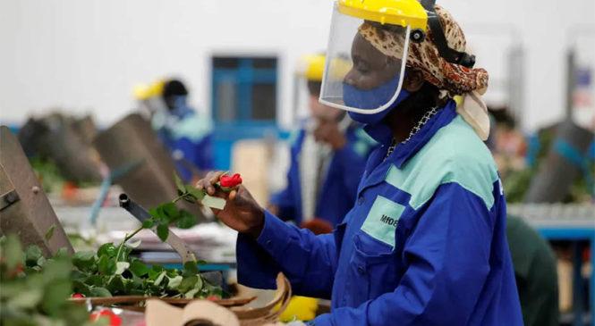 Los salarios bajan en el mundo a consecuencia de la pandemia de Covid-19, informa la OIT