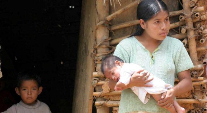 Mujeres indígenas: ¿quién se preocupa de sus problemas de salud y de las niñas madres?