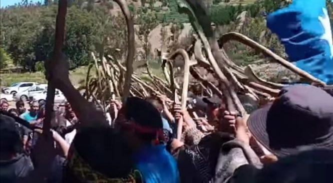 Pronunciamiento del Lef Trawun desde Temucuicui: Derechos Colectivos, Soberanía Territorial y Autodeterminación Mapuche