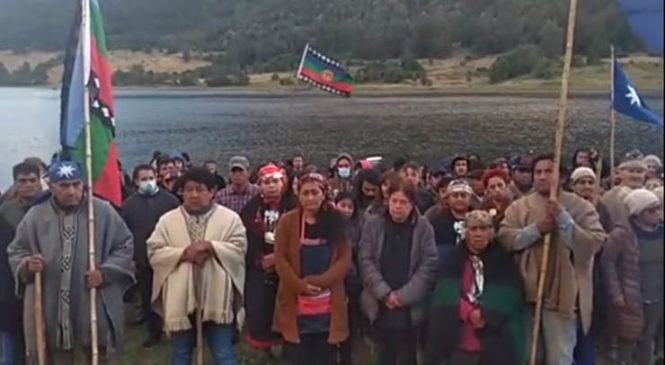 Conflictos inmobiliarios en el sur de Chile: Afectación a la biodiversidad,  territorios ancestrales y derechos colectivos