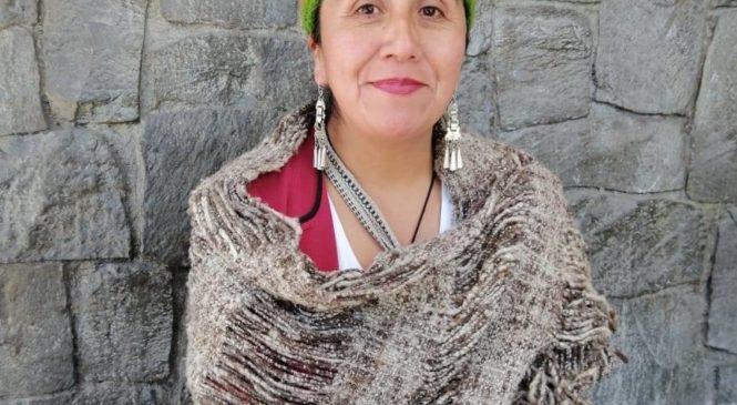 Historia de la Lonko Clementina Lepío que va a las elección constituyente en Chile
