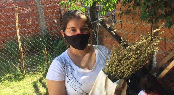 Cuadrillas de salud del FOL aprenden el uso de plantas medicinales