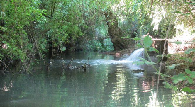 Aguas servidas contaminantes: Nueva denuncia por racismo ambiental en tierras Mapuche de la Araucanía (Chile)