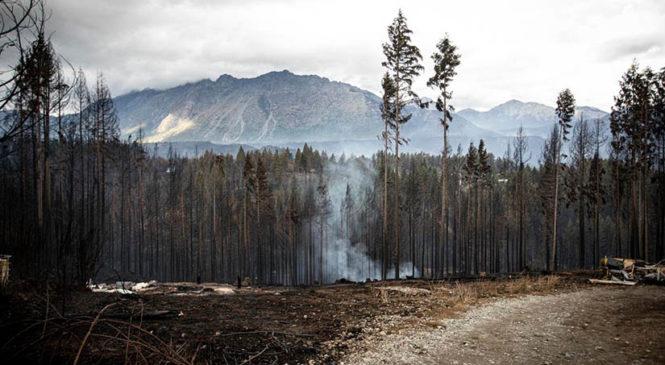 El Parlamento Mapuche repudió las acusaciones infundadas por los incendios