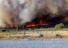 """Incendios en la Patagonia: """"Chubut no está en condiciones de afrontar esta catástrofe"""""""