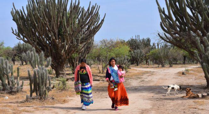 Formosa: ¿por qué se esconden las mujeres wichí?