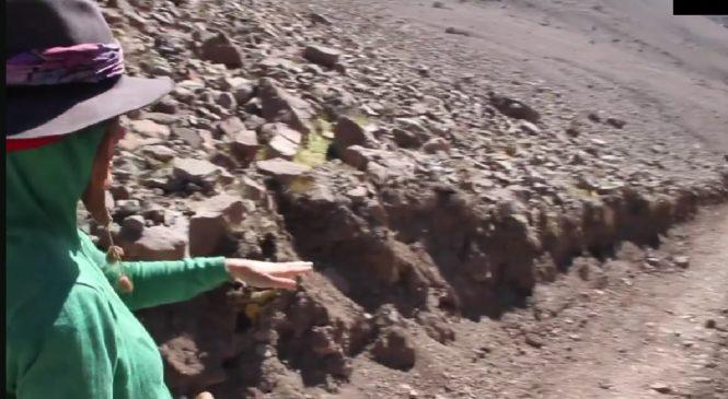 Realizan denuncia por destrucción de Yaretas en importante Cerro para el Pueblo Quechua en Chile