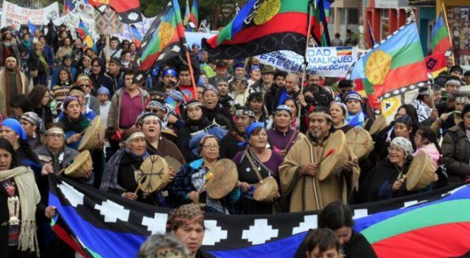 Repudian un manual escolar que omite al pueblo mapuche