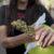 La guerra contra les consumidores de drogas debe terminar