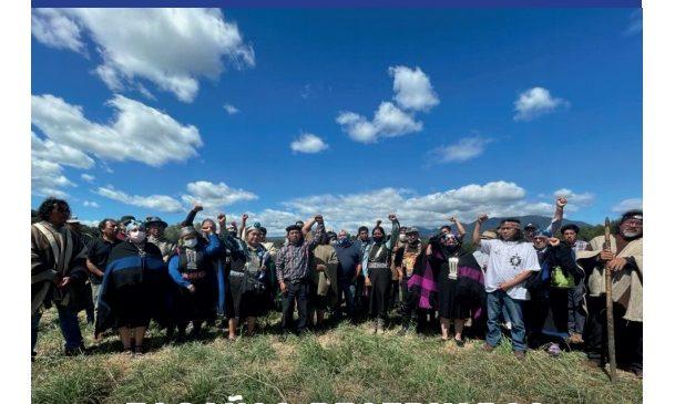 Guía  Electoral  Constituyente en Chile: Escaños Reservados  Pueblos Originarios