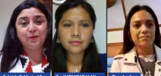 Desafíos constituyentes en Chile desde mujeres de Pueblos Originarios en Chile