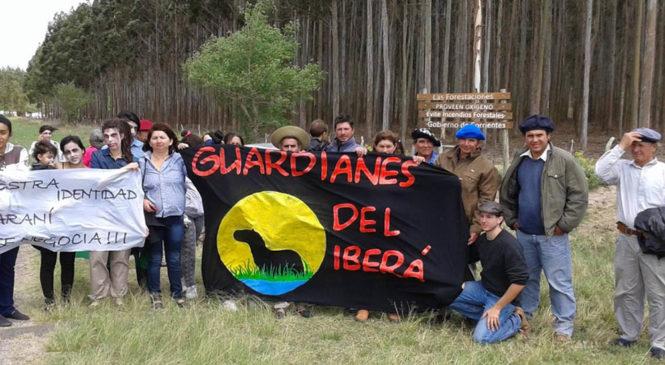 """""""Guardianes del Y'vera"""": diez años de lucha ambiental con identidad"""