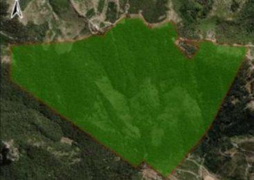 Bariloche: un especialista en Derecho Indígena descartó que el municipio pueda reclamar por tierras en el cerro Otto