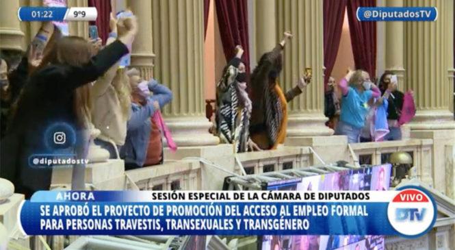 La inclusión laboral travesti trans de Argentina obtuvo media sanción en Diputados