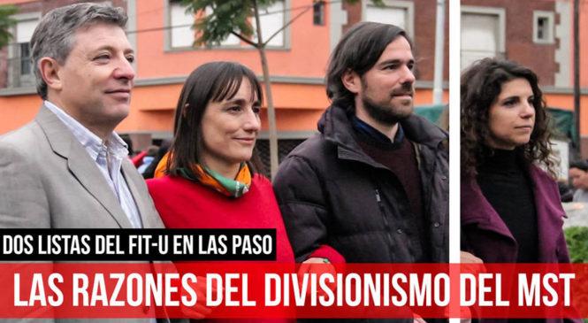 Dos listas del FIT-U en las PASO / Las razones del divisionismo del MST