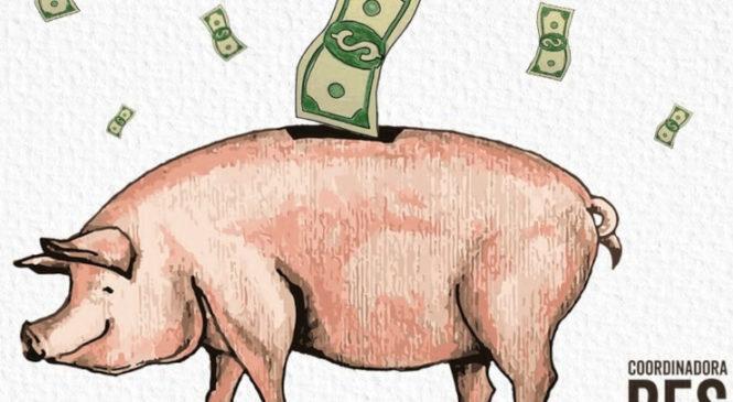 Nuevamente a las calles a decir NO a las mega granjas porcinas