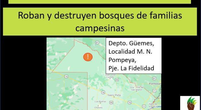 Destrucción de bosque y acaparamiento de tierras en Chaco