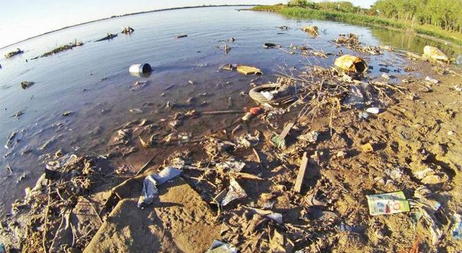 El fuego no está solo: los desechos plásticos son otra amenaza para el río Paraná y su fauna
