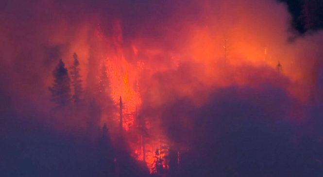 ONU afirma que eventos climáticos extremos se multiplicaron por cinco desde 1970