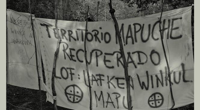 """La vuelta del discurso del """"mapuche usurpador"""""""