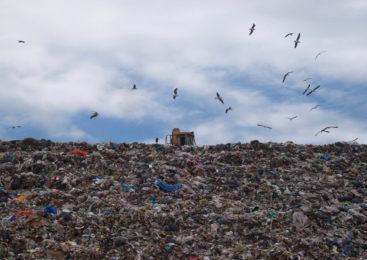 Rosario: Un conjunto de organizaciones presentó un proyecto para relanzar Basura Cero