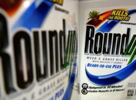 Chile: buscan que Bayer pague $200 millones a cada enfermo de cáncer que se expuso a herbicida